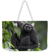 M�llers Bornean Gibbon Hylobates Weekender Tote Bag