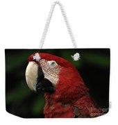 Macaw In Red Weekender Tote Bag