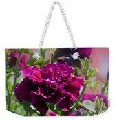 Maco Petunia Flower Double Burgundy Madness Art Prints Weekender Tote Bag
