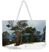 Madrone On Young Hill Weekender Tote Bag