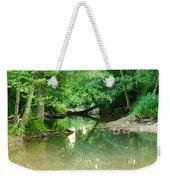 Magic Pond Weekender Tote Bag