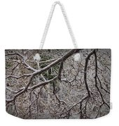 Magnolia Tree Branches Covered With Ice No.3834 Weekender Tote Bag