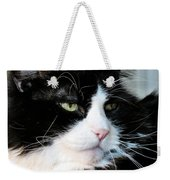 Maine Coon Face Weekender Tote Bag