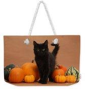 Maine Coon Kitten And Pumpkins Weekender Tote Bag