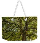 Majestic Tree Weekender Tote Bag