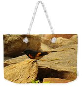 Male American Redstart On The Rocks Weekender Tote Bag