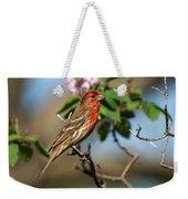 Male Finch Weekender Tote Bag