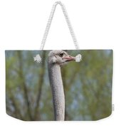 Male Ostrich Weekender Tote Bag