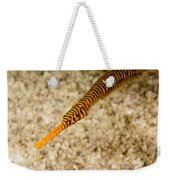 Male Yellow Banded Pipefish Carrying Weekender Tote Bag