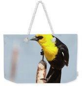 Male Yellow-headed Blackbird Weekender Tote Bag