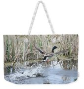 Mallard Duck Flying Weekender Tote Bag