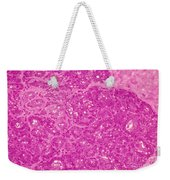 Mammary Gland Lm Weekender Tote Bag