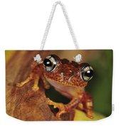 Mantellid Frog Boophis Tephraeomystax Weekender Tote Bag