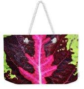 Many Leaves Of Coleus Weekender Tote Bag