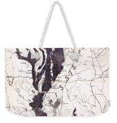 Map: Mississippi River, 1874 Weekender Tote Bag