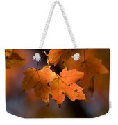 Maple Leaves In The Fall In Middlebury Weekender Tote Bag