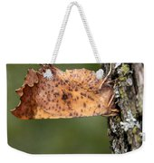 Maple Spanworm Moth Weekender Tote Bag