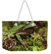 Marsupial Frog Gastrotheca Sp, A Newly Weekender Tote Bag