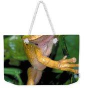 Masked Treefrog Weekender Tote Bag