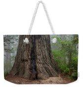 Massive Redwood And Fog Weekender Tote Bag