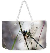 Mating Dragonflies  Weekender Tote Bag
