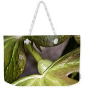 May Apple Weekender Tote Bag