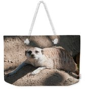 Meerkat Weekender Tote Bag