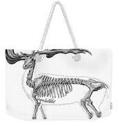 Megaloceros, Cenozoic Mammal Weekender Tote Bag