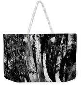 Melaleuca Tree Weekender Tote Bag