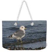 Mew Gull Weekender Tote Bag