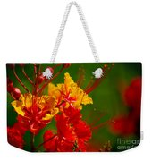 Mexican Bird Of Paradise Weekender Tote Bag