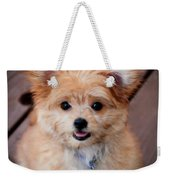 Mi-ki Puppy Weekender Tote Bag