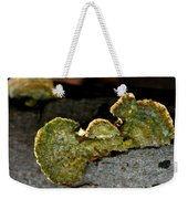Michigan Jade Fungus Weekender Tote Bag