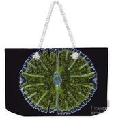 Micrasterias Sp. Algae Lm Weekender Tote Bag