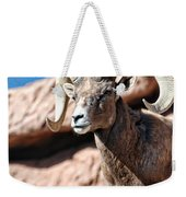 Mighty Big Horns You Have Weekender Tote Bag