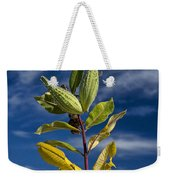 Milkweed Pods Against A Blue Sky Background Weekender Tote Bag
