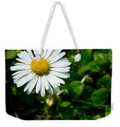 Miniature Daisy In The Grass Weekender Tote Bag