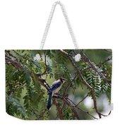 Mississippi Blue Jay Weekender Tote Bag