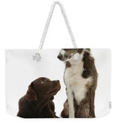 Mixed Breed And Chocolate Lab Weekender Tote Bag