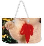 Mixed Breed Cat Reaches Out Weekender Tote Bag