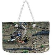 Mom And Duckling Weekender Tote Bag