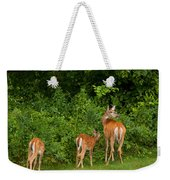 Mom And Two Weekender Tote Bag
