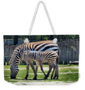 Mom N Baby Stripes Weekender Tote Bag