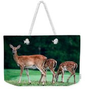 Mom With Twins Weekender Tote Bag