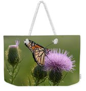 Monarch Butterfly On Bull Thistle Wildflowers Weekender Tote Bag