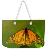 Monarch On Hackberry Weekender Tote Bag