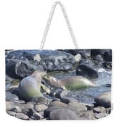 Monk Seals Weekender Tote Bag