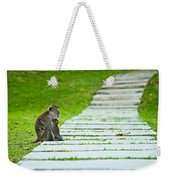 Monkey Mother With Baby Resting On A Walkway Weekender Tote Bag