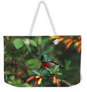 Montane Double-collared Sunbird Weekender Tote Bag