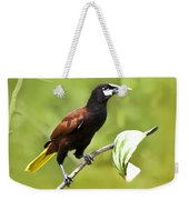 Montezuma Oropendula - Dp Weekender Tote Bag